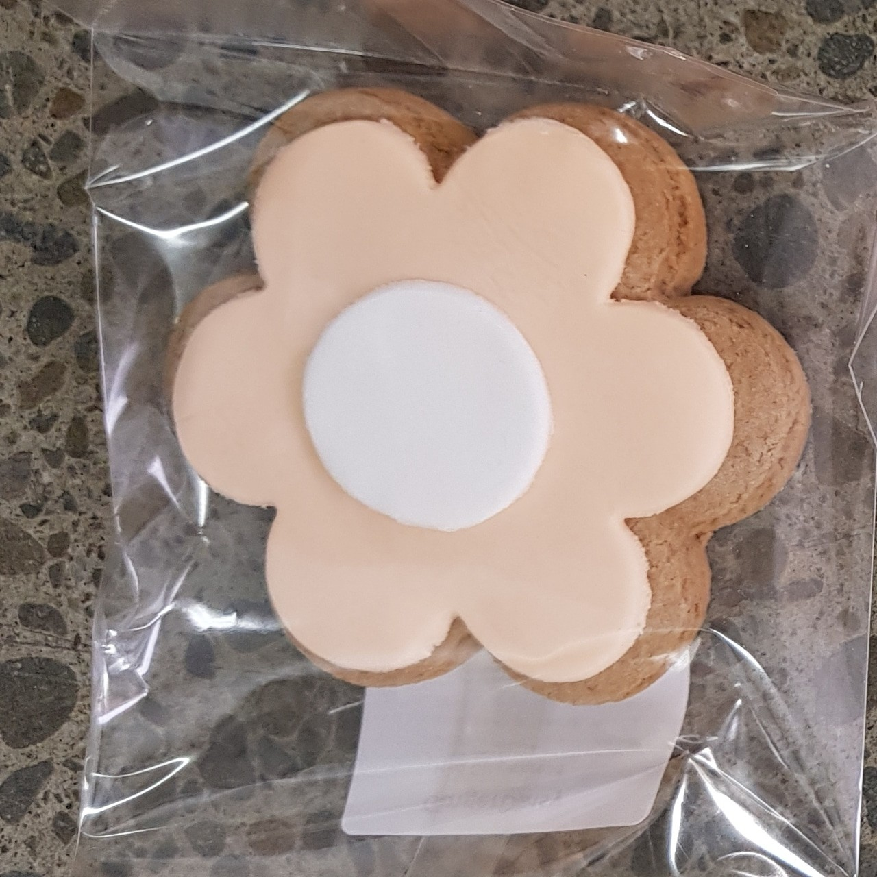 Gingerbread Daisy - Peach